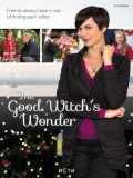 The Good Witch's Wonder - 2014