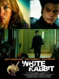 White Rabbit - 2013
