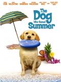He Dog Who Saved Summer - 2015