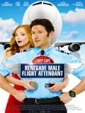 Larry Gaye: Renegade Male Flight Attendant - 2015