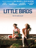 Little Birds - 2011