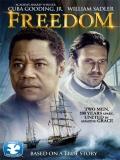 Freedom - 2014