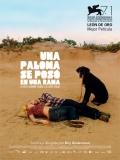 Una Paloma Se Posó En Una Rama A Reflexionar Sobre La Existencia - 2014