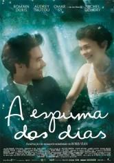 La Espuma De Los Días (2013)