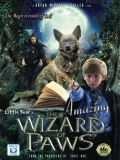 The Amazing Wizard Of Paws - 2015