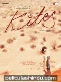 Kites - 2010