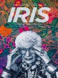 Iris - 2014