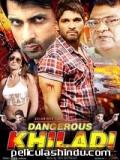 Dangerous Khiladi - 2013