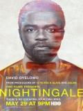 Nightingale - 2014
