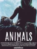 Animals - 2014