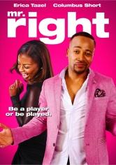 Mr Right (2015)