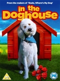 In The Dog House - 2014