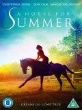 A Horse For Summer - 2015