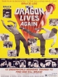 El Dragón Ataca - 1977