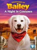 Adventures Of Bailey: A Night In Cowtown - 2013