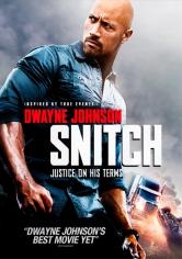 Snitch (El Infiltrado) (2013)