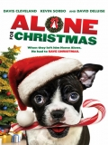 Alone For Christmas - 2013