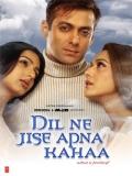 Dil Ne Jise Apna Kaha - 2004