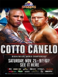 Miguel Cotto Vs Canelo Alvarez - 2015