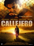 Callejero - 2015