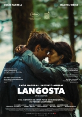 The Lobster (Langosta) poster