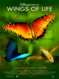 Wings Of Life (Alas De La Vida) - 2013
