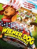 Wiener Dog Internationals - 2015