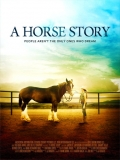 A Horse Story - 2014