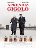 Aprendiz De Gigolo - 2013