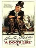 Vida De Perro - 1918