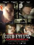 Cold Eyes (Vigilancia Extrema) - 2013
