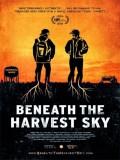 Beneath The Harvest Sky - 2013
